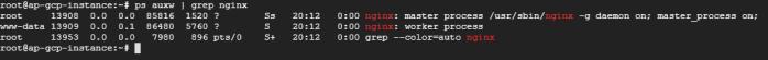 nginx-ps